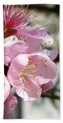 Peach Blossoms Bath Towel