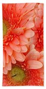 Peach Gerbers Bath Towel