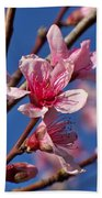 Peach Tree Blossoms Bath Towel
