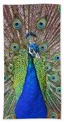 Peacock Displaying His Plumage Bath Towel