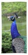 Peacock Portrait #3 Bath Towel