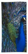 Peacock Splendor Bath Towel