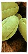 Pear Pollen Grains, Sem Bath Towel