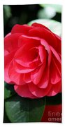 Pearl Of Beauty - Red Camellia Bath Towel