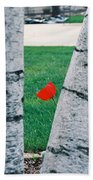 Peeking Tulip Hand Towel