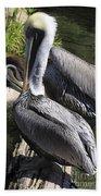 Pelican Duo Hand Towel