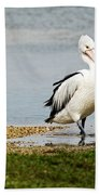 Pelican Pose Bath Towel