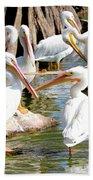 Pelican Squabble Bath Towel