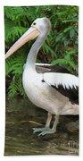 Pelican With A Bird Park In Bali Bath Towel
