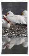 Pelicans Bath Towel