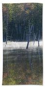 Pemigewasset Wilderness - White Mountains New Hampshire Usa Bath Towel