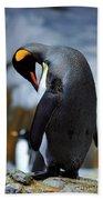 Penguin Bath Towel