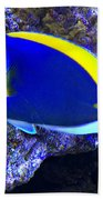Blue Tang Fish  Bath Towel