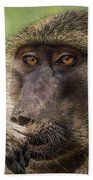 Pensive Baboon Bath Towel