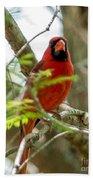 Perched Cardinal Bath Towel
