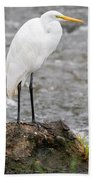 Perched Great Egret Bath Towel