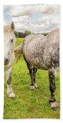Percherons Horses Bath Towel
