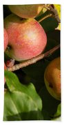 Perfect Apples Bath Towel