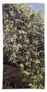 Pergola And Vines Bath Towel