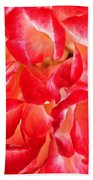 Petals Of Rose Bath Towel