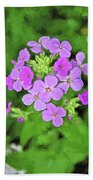 Phlox For You Bath Towel