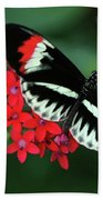 Piano Key Butterfly Bath Towel