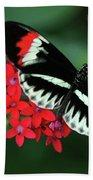 Piano Key Butterfly Bath Towel