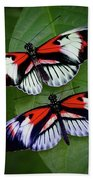 Piano Key Butterfly's Bath Towel