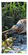 Pheasant Bath Towel