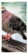 Pigeon Toes Bath Towel