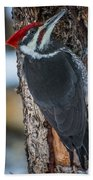 Pileated Woodpecker Hand Towel
