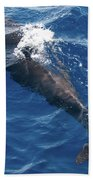 Pilot Whale 3 Bath Towel