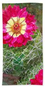 Pincushion Cactus Bath Towel