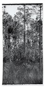 Pine Land In B/w Hand Towel by Rudy Umans