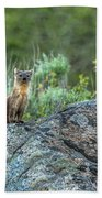 Pine Marten With Attitude Bath Towel