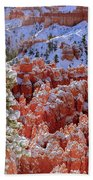 Pine Tree In Bryce Canyon Bath Towel