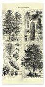 Pine Trees Study Black And White  Bath Towel