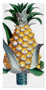 Pineapple, 1789 Bath Towel