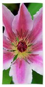 Pink And White Clematis Bath Towel