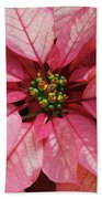 Pink And White Poinsettia Bath Towel