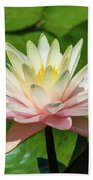Pink And White Water Lily Bath Towel