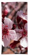 Pink Blossoms 033014c Hand Towel