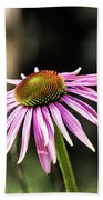 Pink Coneflower Bath Towel