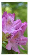 Pink Flowering Rhododendron Bush In Full Bloom Bath Towel