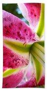 Pink Lily Summer Botanical Garden Art Prints Baslee Troutman Bath Towel