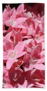 Pink Pentas Beauties Bath Towel