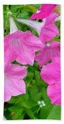 Pink Petunia Flower 11 Bath Towel