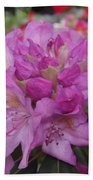 Soft Purple Rhododendron  Bath Towel