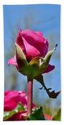 Pink Rose Against Blue Sky Iv Bath Towel