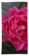Pink Roses 2 Bath Towel